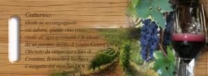Il gutturnio, un vino dall'origine antica